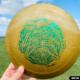 Artwork by Brian Allen printed on Innova Disc Golf Discs
