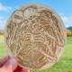 Basket Skeleton Wooden Disc Golf