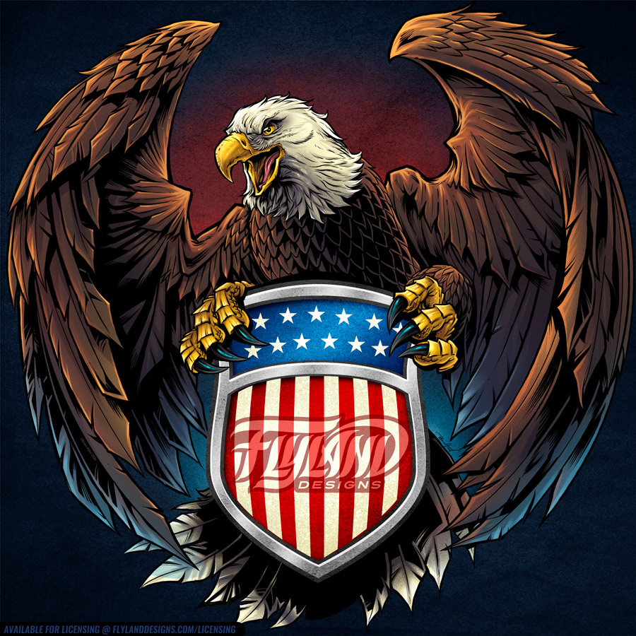 American Bald Eagle with wings s
