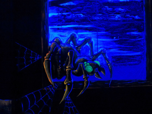 Blacklight spider