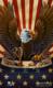 Patriotic Eagle illustration for dye-sublimated wrestling singlets.