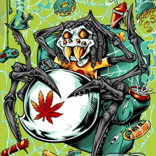 Cannabis Spider